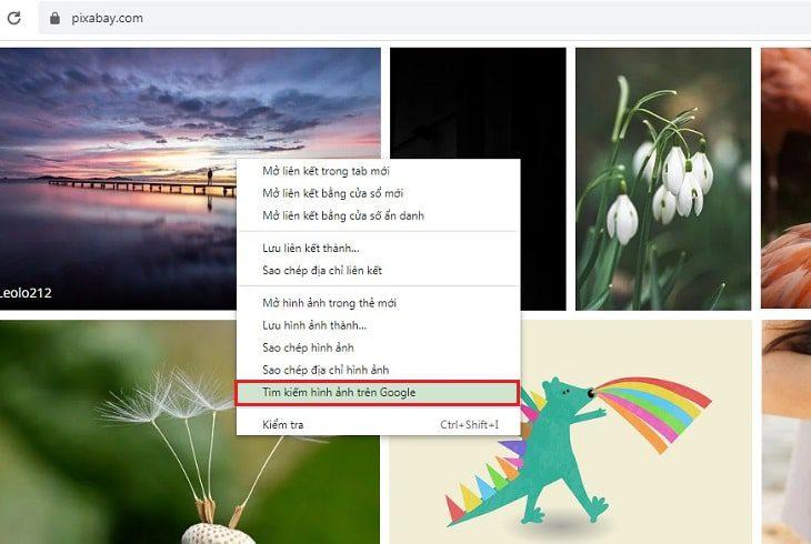Tìm kiếm hình ảnh bằng google